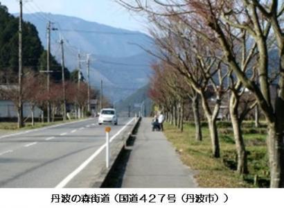 丹波の森街道